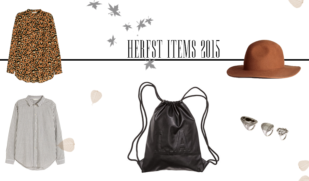 Favoriete herfst items 2015 - Label of Suze