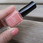 Hema Long Lasting Nailpolish – 813 | Label of Suze